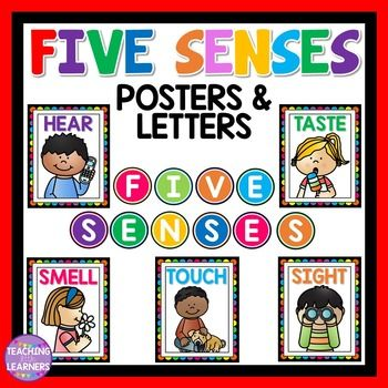 Five Senses Posters and Circle LettersSee, Touch, Hear, Smell, TastePrint and laminate to use as class posters.Click here for more Five Senses…