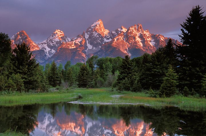 Schwabacher's Landing in the Tetons. (One of my favorite parks): Favorite Parks, Favorite Places, Natural Beautiful, Grand Teton National, Beautiful Places, Jackson Hole Wyoming, Places I D, Landscape Photography, National Parks