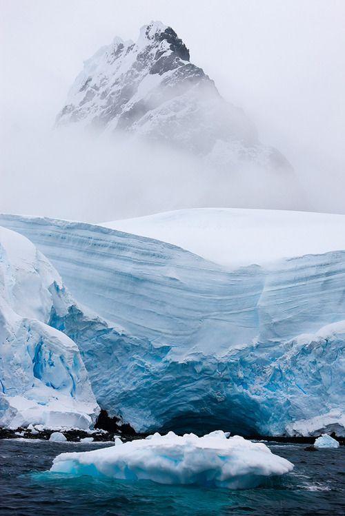 Peak in Polar region.