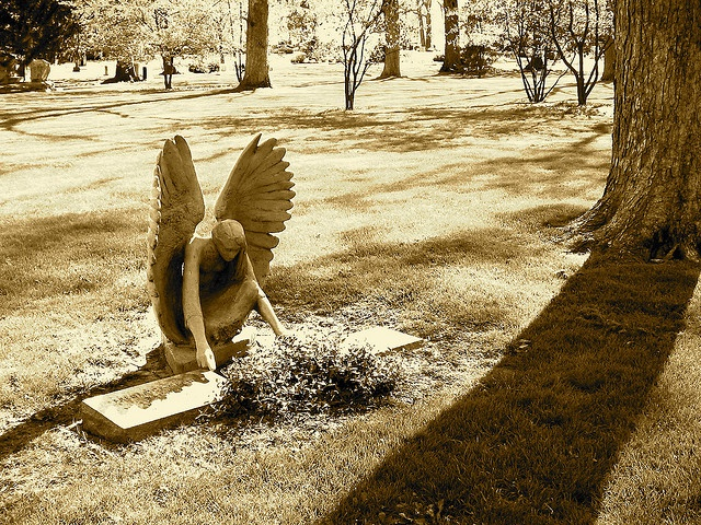 """Tending to the Grave Forever...Lake Forest Cemetery. Beautiful."".... or incredibly creepy if you're a #Whovian"