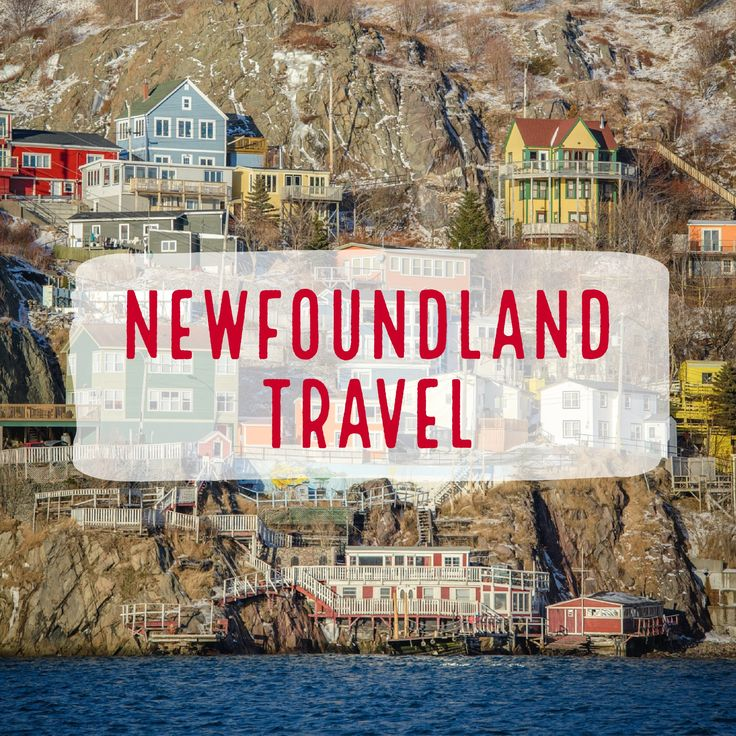 A board filled with pins to help you plan a trip to #Newfoundland and #Labrador