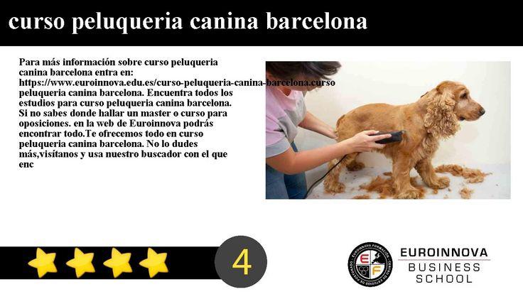 curso peluqueria canina barcelona - Para más información sobre curso peluqueria canina barcelona entra en: https://www.euroinnova.edu.es/curso-peluqueria-canina-barcelona.    curso peluqueria canina barcelona. Encuentra todos los estudios para curso peluqueria canina barcelona. Si no sabes donde hallar un master o curso para oposiciones. en la web de Euroinnova podrás encontrar todo.    Te ofrecemos todo en curso peluqueria canina barcelona. No lo dudes másvisítanos y usa nuestro buscador…