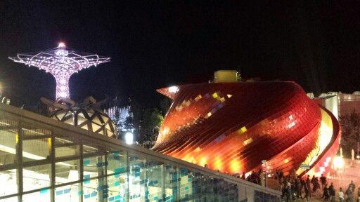 dalla Germania verso il drago e l'albero della vita #Expo2015Milano