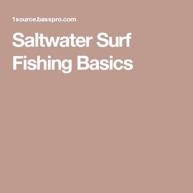 Best 25 surf fishing ideas on pinterest surf fishing for Saltwater fishing basics