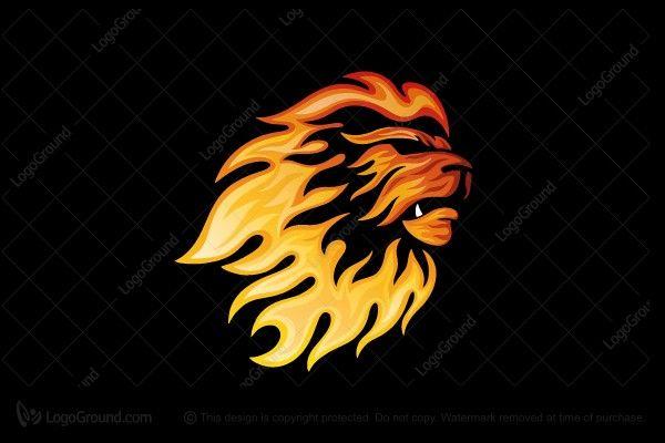 Fire Lion Logo Fire Lion Lion Logo Lion Illustration