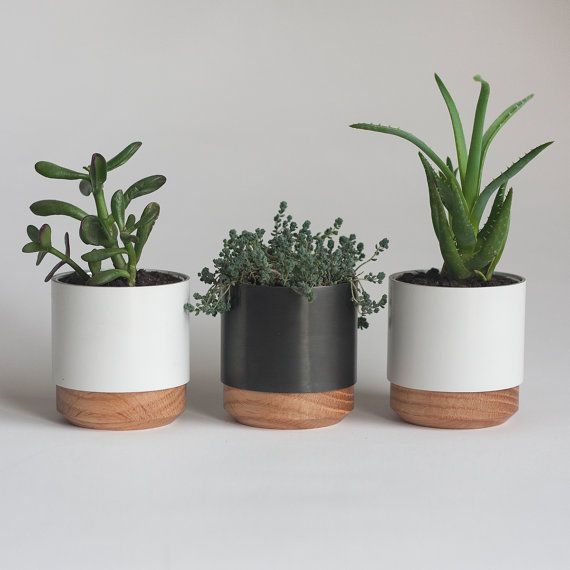 Hand-finished planters in metal and solid wood. Ideal for desk, in a windowsill or as a centerpiece. For low water plants and succulents. Combine