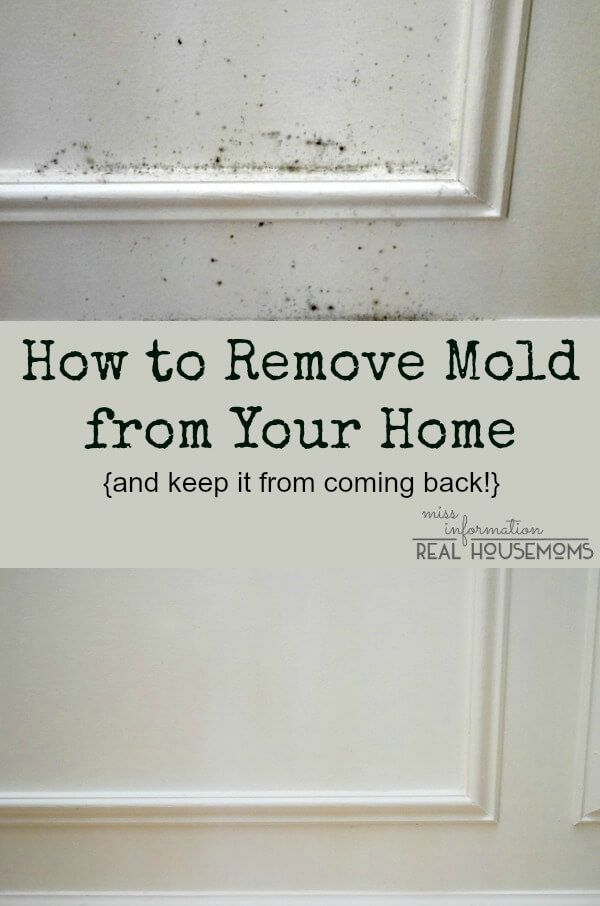 The Secret To Removing Mold And Keep It From Coming Back House Cleaning Tips Cleaning Hacks Deep Cleaning Tips