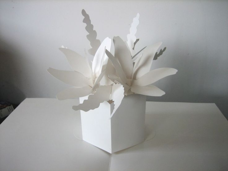 16 best pop up books images on pinterest paper crafts papercraft pop up paper blossoms by ray marshall mightylinksfo