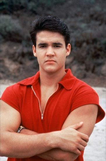 Mighty Morphin Power Rangers: Jason Lee Scott/ Red Ranger (Austin St. John)