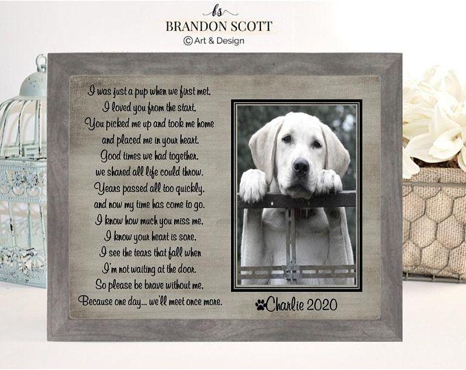 Cat Memorial Personalized Pet Loss Frame Pet Loss Memorial for Dog Passing Gift Engraved Pet Sympathy Gift Dog Passing Away Dog Memorial