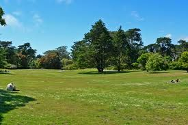 The Smell of a Freshly Mowed Lawn. - News - Bubblews
