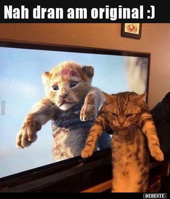 Nah dran am original :) | Lustige Bilder, Sprüche, Witze, echt lustig