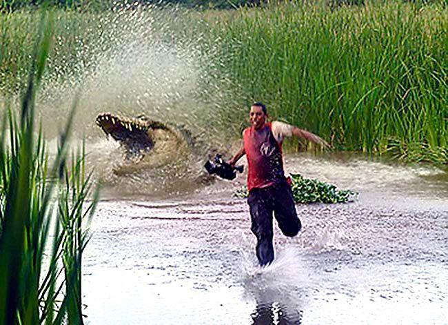 Crocodile Fuck 84