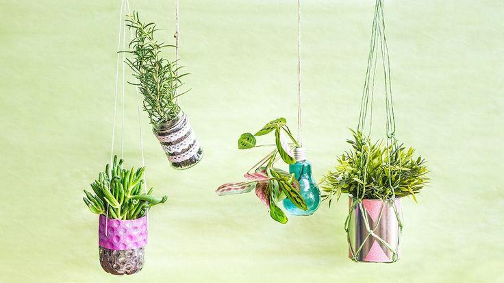 Vyrobte si závěsné květináče: Z plastových lahví, plechovky i žárovky! - Hobby