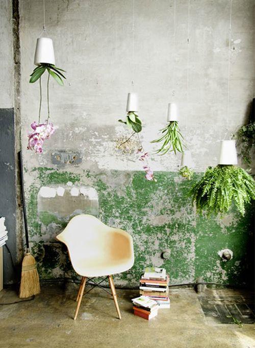 """Jolie décoration avec des pots blancs suspendus et fleurs, plantes vertes. Charles Eames chair. Mur en béton """"destroy"""" . Books. Concrete wall with green paint. #home #wall"""