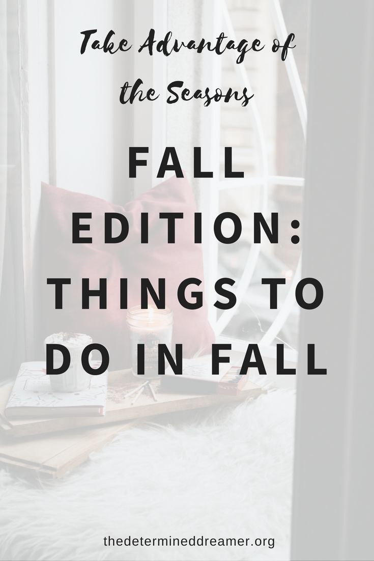 Take Advantage of the Seasons- Fall Edition: What To Do In Fall