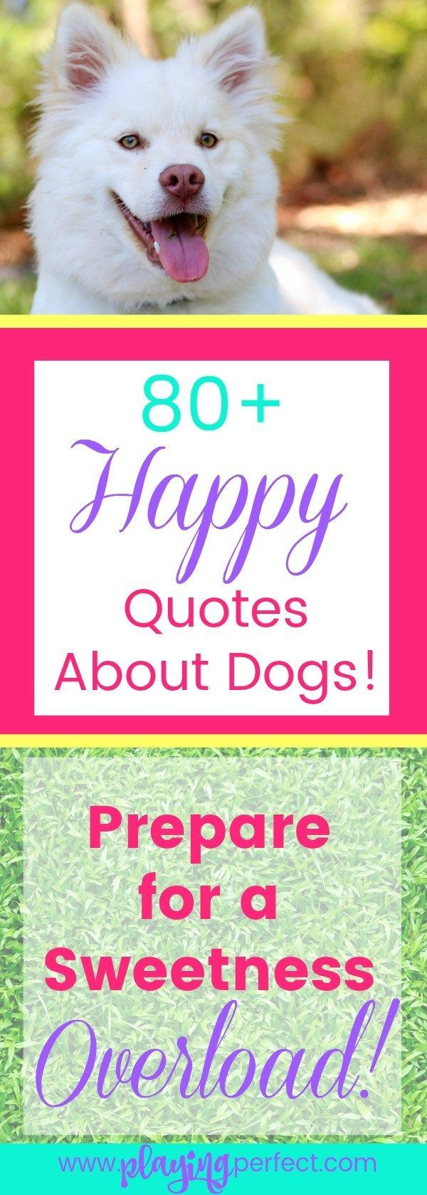 Dog quotes! Here are over 80 totally sweet dog lover quotes about dogs that will make you smile! Dogs are the best and if you're a dog parent you're gonna feel proud to be a dog person as you read these dog mom quotes! FREE dog printable too! | playingperfect.com | #dog #dogs #dogmom #dogmoms #dogpeople #dogsarethebest #goldenretriever #ilovemydog #pup  #puppies #puppy #bigdogs #cutedog #playingperfect #quotes #quote #quotesandbeautifulwords #quotesandsayings #quotestoliveby #happyquotes