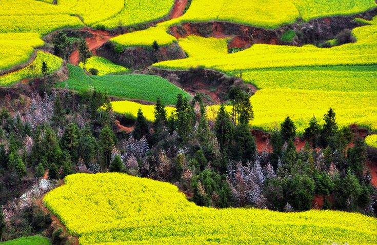Distractify | The 22 Most Unbelievably Colorful Places On Earth. China.
