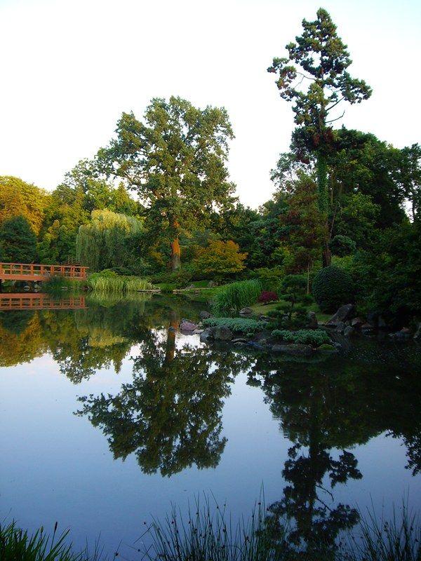 5. Wrocław - Japanese garden.