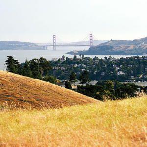 Ferry to Tiburon, California! SF day trip