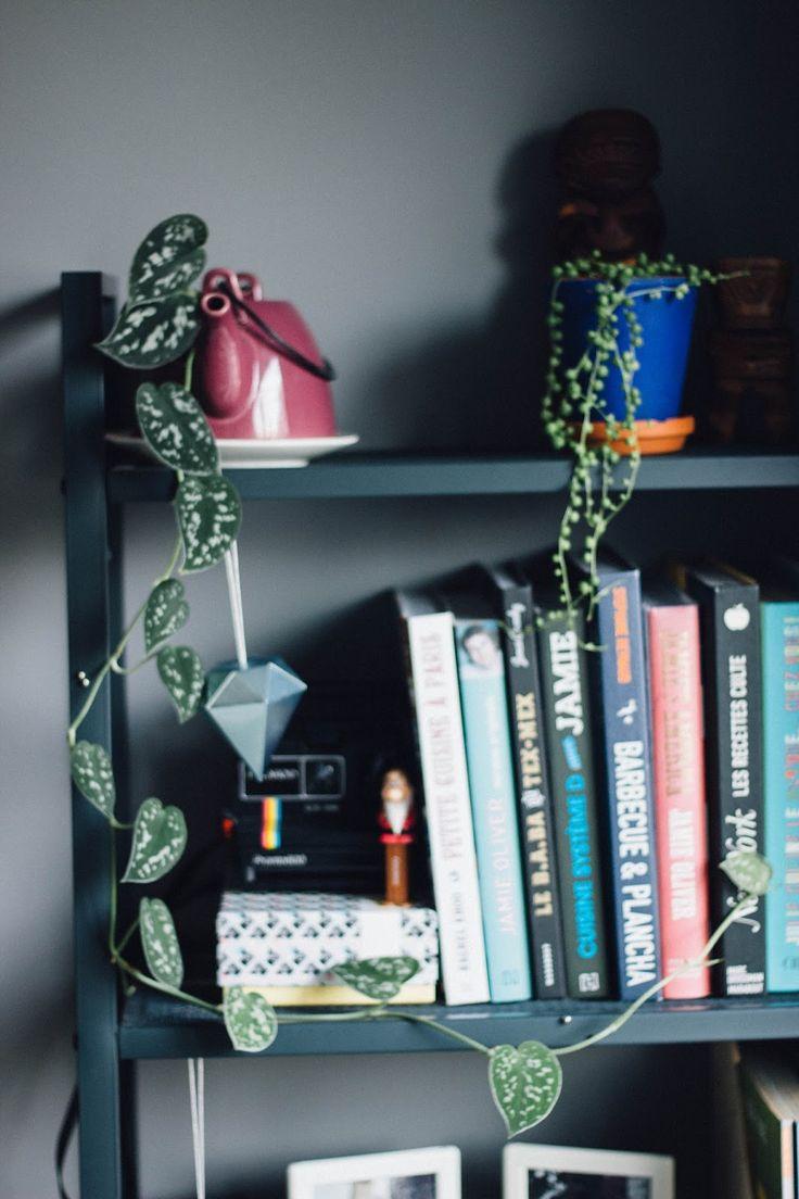 Urban Jungle Bloggers: Creative Plant Pots by @littlemissyasou