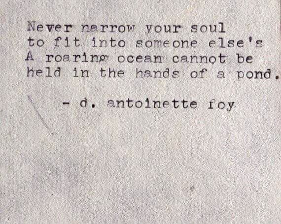 never narrow your soul to fit someone else's. A roaring ocean cannot be held in the hands of a pond. ~ d .antoinette foy