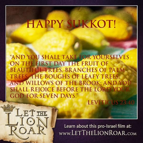 """Happy Sukkot! """"...rejoice before the Lord your God for seven days."""" - Leviticus 23:40"""