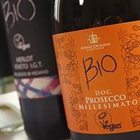 Un calice di Salute! Scopri i benefici del vino sul Blog di Eatamo.com