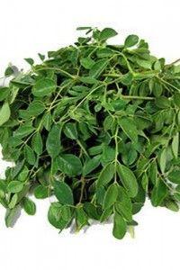 Giersch hilft gegen Gicht ,Rheuma, Hämorrhoiden und wird auch als Entschlackungskur verwendet.