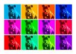 Personalised Pop art canvas prints
