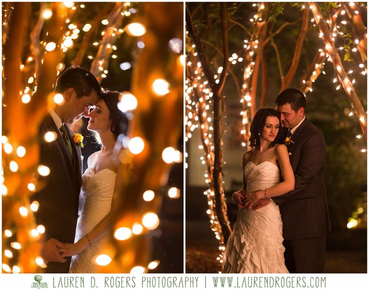 night portraits, wedding photos at night, night wedding, wedding christmas lights, romantic evening portraitsreception photos, dance photos, wedding trees, Virginia Wedding Photographer Lauren D Rogers Photography, Boar's Head Inn