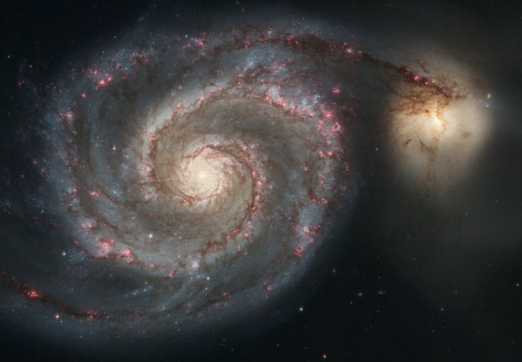 This galaxy is nicknamed the Whirlpool because of its swirling structure. Young stars reside in the curving spiral arms, whereas the yellowish core is the home of older stars. Photograph: Hubble Space Telescope/NASA/ESA