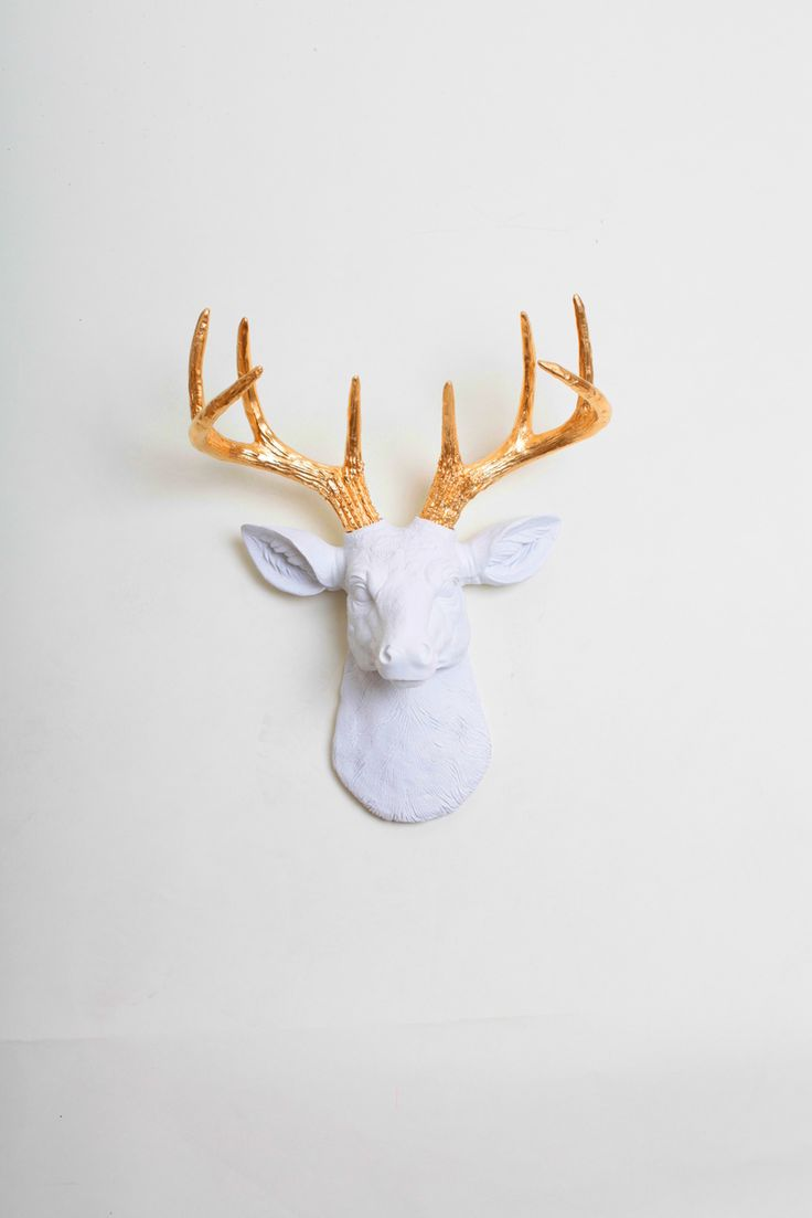 White Faux Taxidermy - The MINI Alfred | Stag Deer Head | Faux Taxidermy | White w/ Gold Antlers, $47.99 (http://www.whitefauxtaxidermy.com/product/mini-stag-deer-head-faux-taxidermy-white-resin-gold-antlers/)