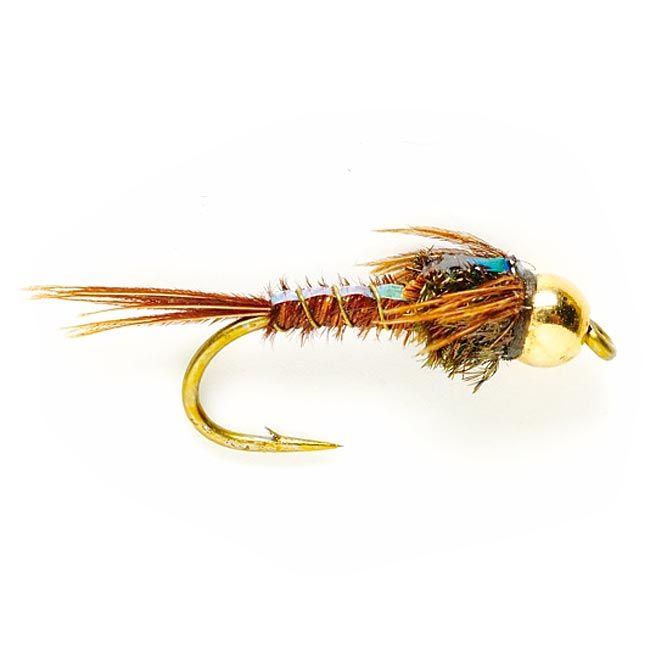 best way to learn how to fly fish