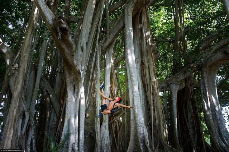 Танцоры среди нас. Сарасота, Флорида, США. Танцует Рикардо Родос.  Источник: http://www.adme.ru/fotograf/tancory-sredi-nas-676905/ © AdMe.ru