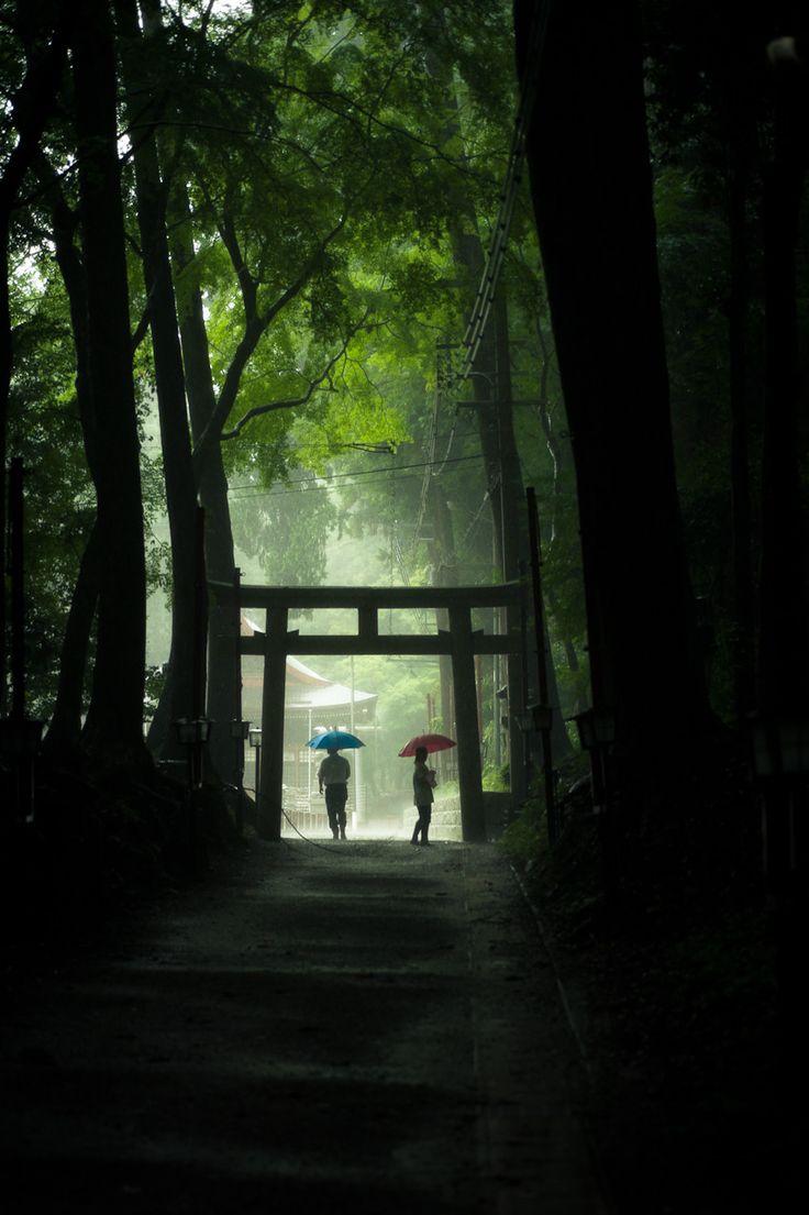 At the shrine gate ( tori) on a rainy day/Japan