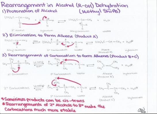 Rearrangement of Alcohol Dehydration Methyl Shifts