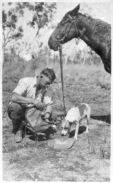 'Tis a hot day on patrol and water is scarce [outback mounted policeman pouring water into the top of his hat so his dog and horse can have a drink]. (Photo undated). v@e.