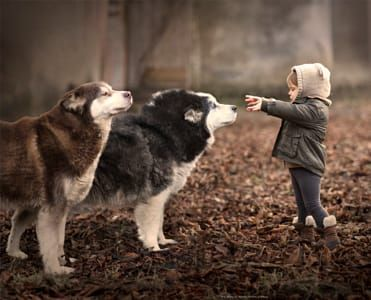 Salinka & her dogs..