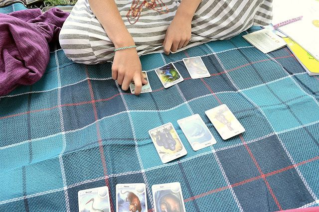 Cardline summer activities