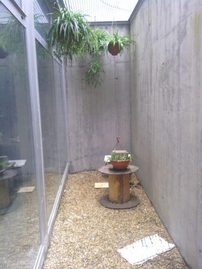Mejores 7 im genes de patio ingl s en pinterest jard n - Patio ingles ...