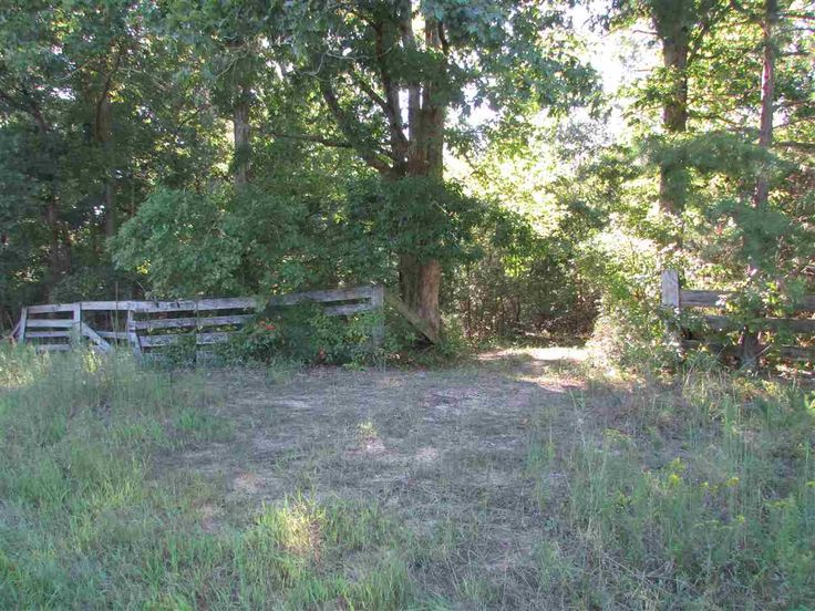 Great property for privacy or to use as Hunting Land! 20+/- acres. Prime hunting, city water, electricity accessible. Approximately 3 miles to Tennessee