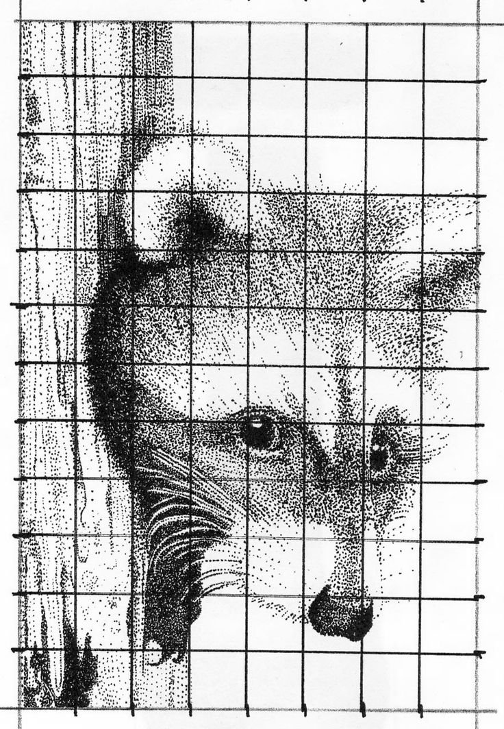 22 best Grid drawing images on Pinterest | High school art, Middle ...