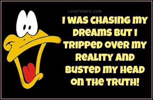 I was chasing my dreams funny quotes quote funny quote funny quotes looney toons daffy duck humor