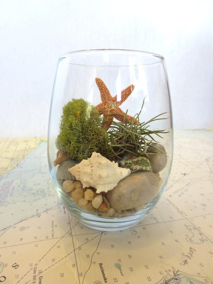 Take me to the Shore..... Modern Glass Vessel Beach Inspired Natural Terrarium