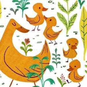 duck illustration - Google Search