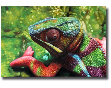 A pinch of color.. The Chameleon! oil on canvas by #paintify.de