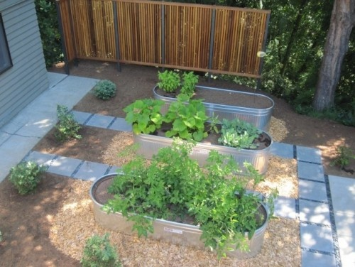 Galvanized tubs make quick raised beds herb and vegtable for Large metal tub for gardening