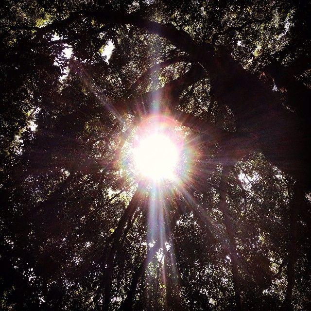 Ray of light #rome #italy #roma #italia #castropretorio