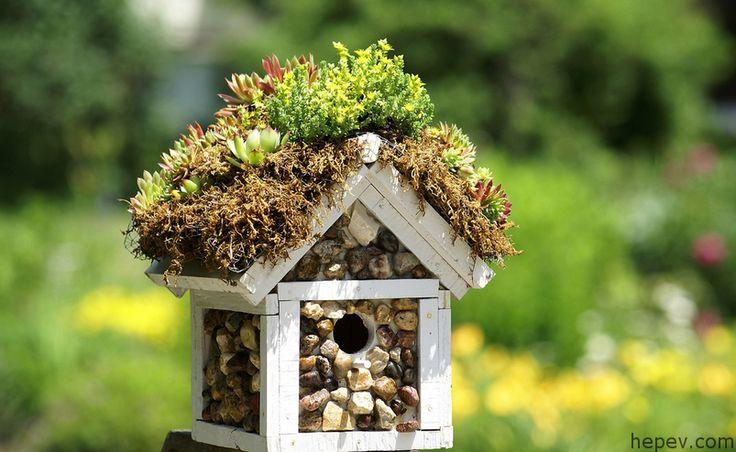 Kuş Kafesi İle Dekoratif Düşünceler! - http://hepev.com/kus-kafesi-ile-dekoratif-dusunceler-2677/